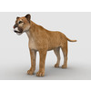 09 09 43 713 mountain lion1 4