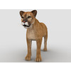 09 09 45 54 mountain lion2 4