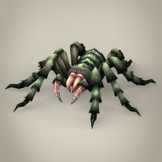 Game Ready Spider Tarantula 3D Model
