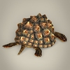 04 26 45 914 game ready mountain tortoise 06 4