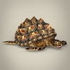 04 26 48 17 game ready mountain tortoise 07 4