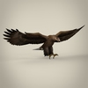 04 27 28 197 game ready realistic eagle 10 4