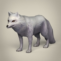 Game Ready White Fox 3D Model