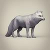 04 28 01 386 game ready white fox 06 4
