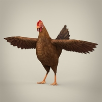 Game Ready Realistic Hen 3D Model