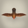 22 14 26 430 game ready realistic hen 06 4