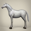 22 15 09 923 game ready white horse 03 4