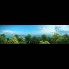 10 13 44 633 forest scene 8 2 4