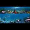 10 21 21 978 underwater world 001 1 4