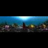 10 21 23 23 underwater world 001 2 4