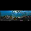 10 21 25 562 underwater world 001 4 4