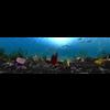 10 51 25 685 underwater world 001 6 4