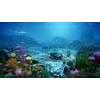 10 51 29 267 underwater world of coral and aquatic plants animated 1 4