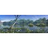 10 51 41 755 wetland landscape 003 2 4
