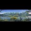 10 51 44 108 wetland landscape 003 4 4