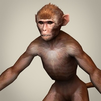 Game Ready Realistic Monkey 3D Model