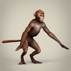 10 54 17 382 game ready realistic monkey 07 4