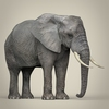 21 44 07 121 realistic asian elephant 07 4