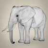 21 44 08 874 realistic asian elephant 09 4