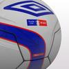 22 59 10 649 fa cup ball 2010 03 4