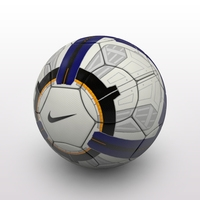 Premier League Ball 2010 3D Model