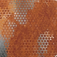 Weathered Honeycomb Plate 3D Model