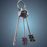 Bunch of keys 3D Model