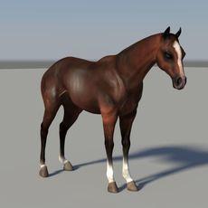 horse for Maya 1.0.0