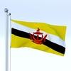 20 35 30 139 flag 0011 4