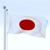 20 58 25 246 flag 0027 4
