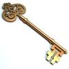 21 17 35 115 golden key main 01 4