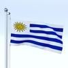 21 41 47 489 flag 0011 4