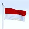 21 55 46 559 flag 0048 4