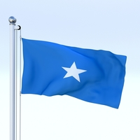 Animated Somalia Flag 3D Model