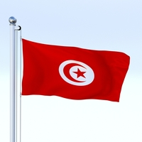Animated Tunisia Flag 3D Model