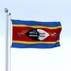 22 54 01 90 flag 0006 4