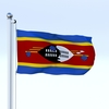 22 54 14 270 flag 0059 4