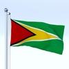23 13 06 533 flag 0011 4