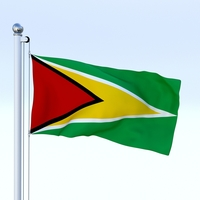 Animated Guyana Flag 3D Model