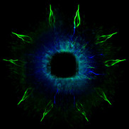 Eye of mystics small