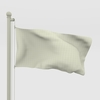 11 00 31 592 flag wire 0062 4