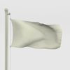14 04 19 445 flag wire 0046 4