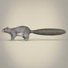 01 37 38 159 realistic squirrel 03 4