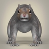 01 37 38 492 realistic squirrel 02 4