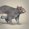01 37 38 594 realistic squirrel 06 4