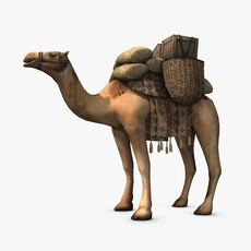 Loaded camel 3D Model