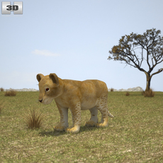 Lion Cub 3D Model