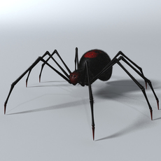 Black Spider Rigged 3D Model