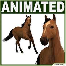 Animated Wild Horse (Running) 3D Model
