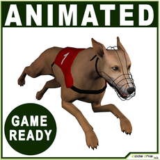 Greyhound Dog Real-Time 3D Model